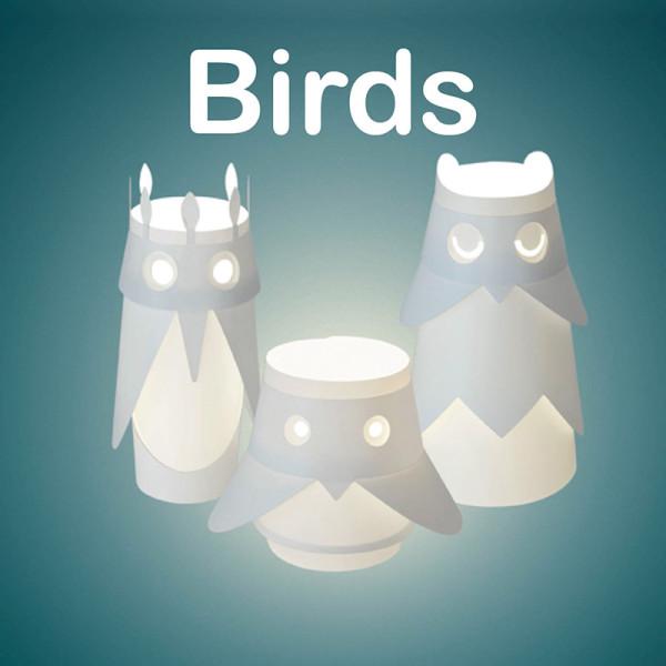user-guide-birds-set-v2-0